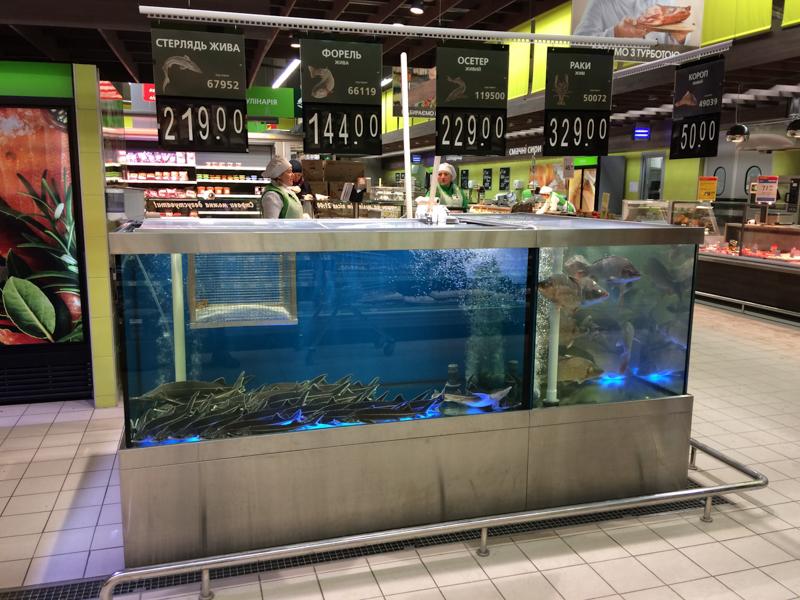 Торговые аквариумы для живой рыбы