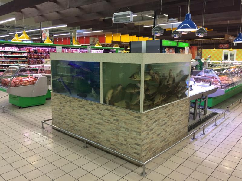 Аквариумы для продажи живой рыбы в магазинах и супермаркетах